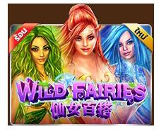 Wild Fairies