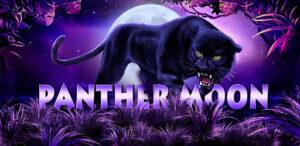 Joker123 เกมสล็อตน่าเล่น Panther Moon